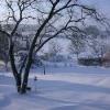 neige-001.jpg