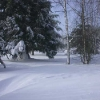 neige-008.jpg
