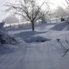 neige-009.jpg