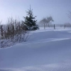 neige-010.jpg