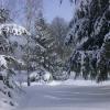 neige-012.jpg