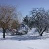 neige-057.jpg