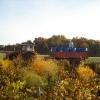 2008-10-11_006.jpg